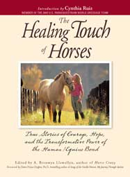 """Yoga for Two,"" The Healing Touch of Horses"
