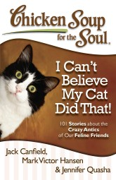 """Guru Kitty,"" Chicken Soup for the Soul: I Can't Believe My Cat Did That"